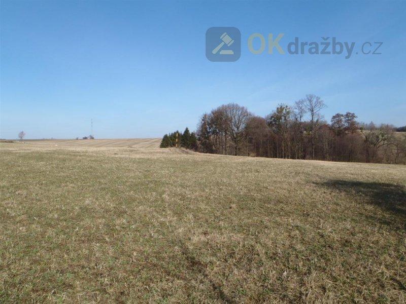 Podíl na pozemcích a lesích v k.ú. Bruzovice, okr. Frýdek-Místek