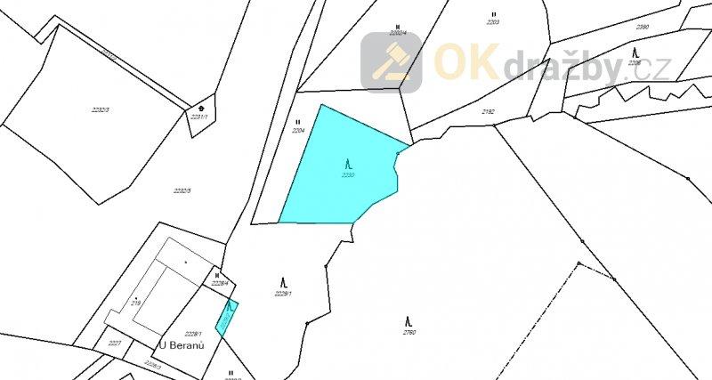 Dražba lesního pozemku v k.ú. Nový Rychnov