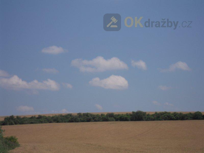 Pozemky, orná půda a ostatní