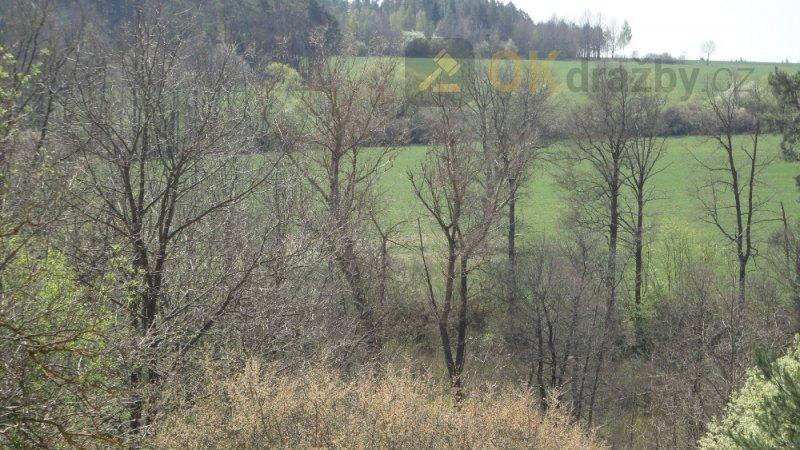 pozemky  (lesní pozemek a ostatní plocha)  v obci Radětice u Bechyně
