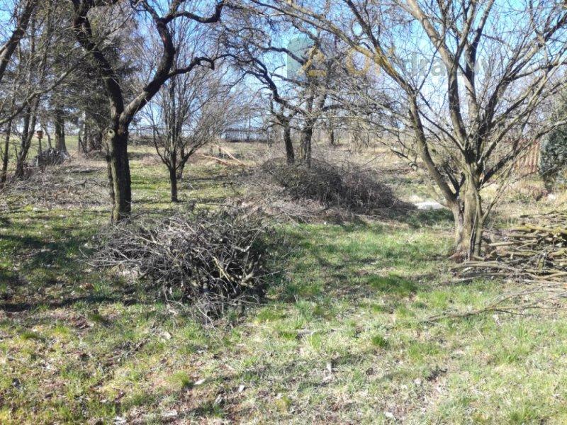 Dražba pozemku v obci Otinoves k.ú Prostějov