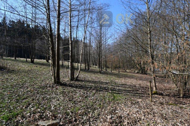Dražba lesního pozemku k.ú. Milíčov u Jihlavy