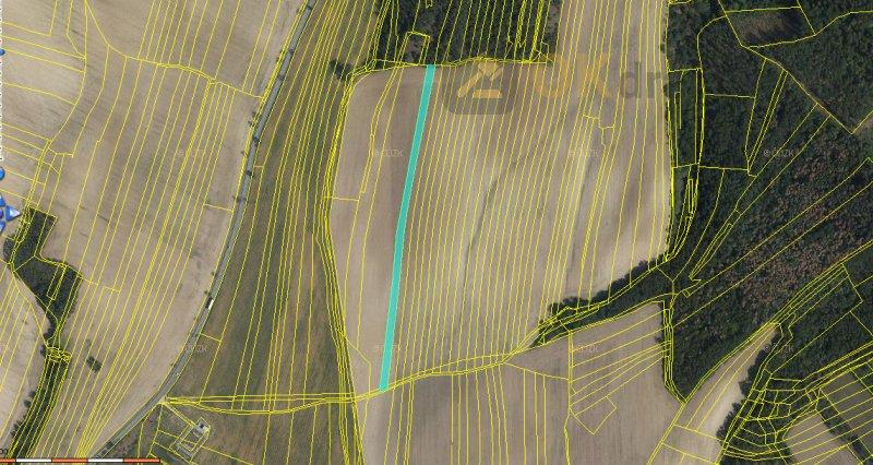 Zemědělské pozemky v k.ú. Ivančice, okr. Brno-venkov