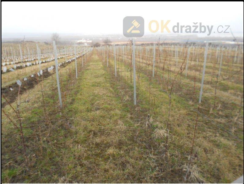 Podíl na zemědělských pozemcích v k.ú. Horní Věstonice, okr. Břeclav