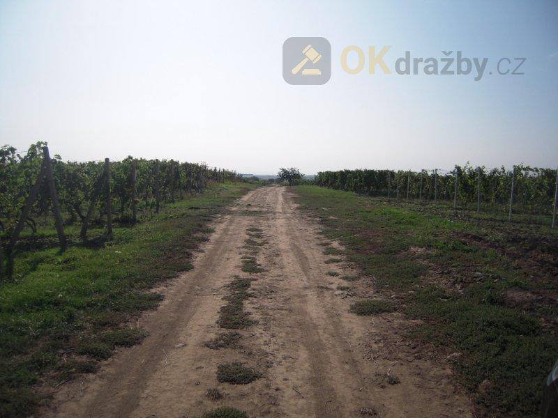 id. 1/4 vinice a ovocného sadu ve Velkých
