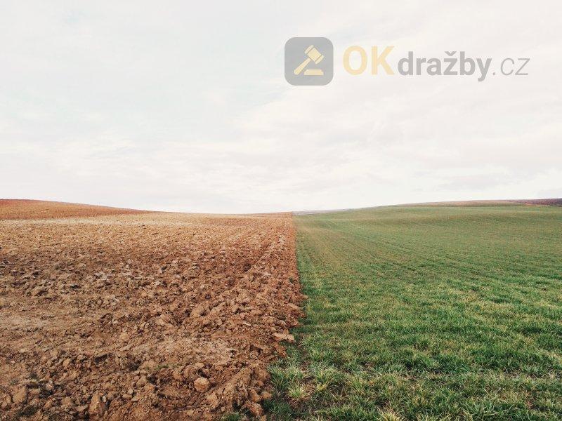 Podíly na pozemcích, které společně netvoří jeden