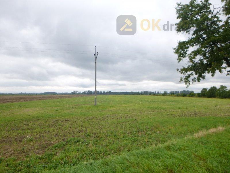Podíl na rodinném domě a pozemcích v obci Holešov,