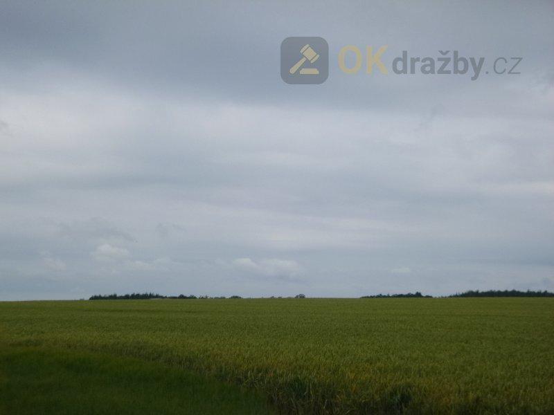 Zemědělské pozemky v k.ú. Kopidlno, okr. Jičín